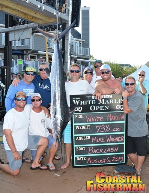 Backlash-white-marlin-6x8.jpg